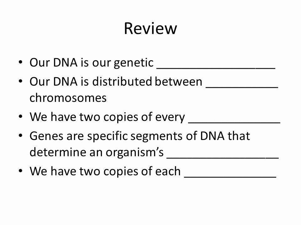 Dominant and Recessive Traits Worksheet Fresh topic Xiii Heredity Mendelian Genetics Day 1 Lesson