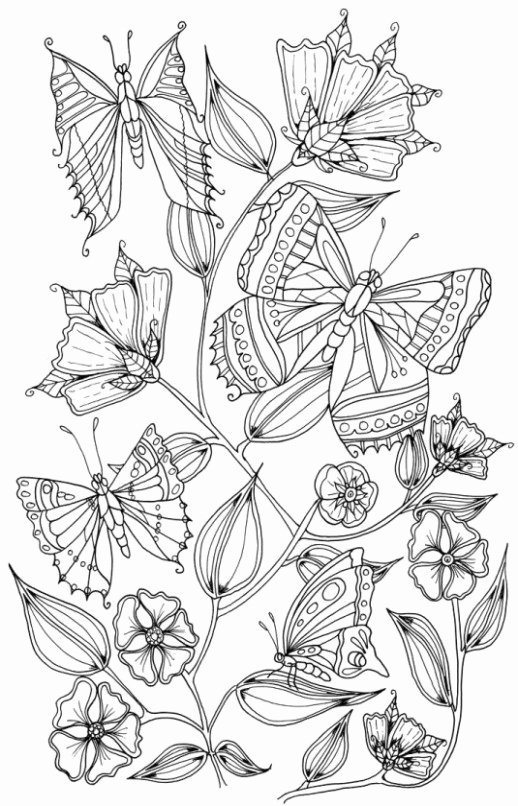 Dot to Dot Adults butterfly Coloring Page Printable Elegant butterfly Coloring