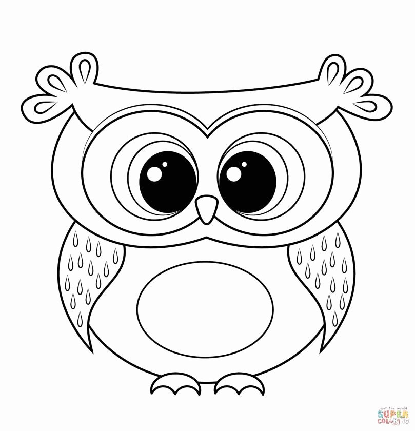 Dot to Dot Easy 21 Trending Image for Printable Coloring Pages Owls