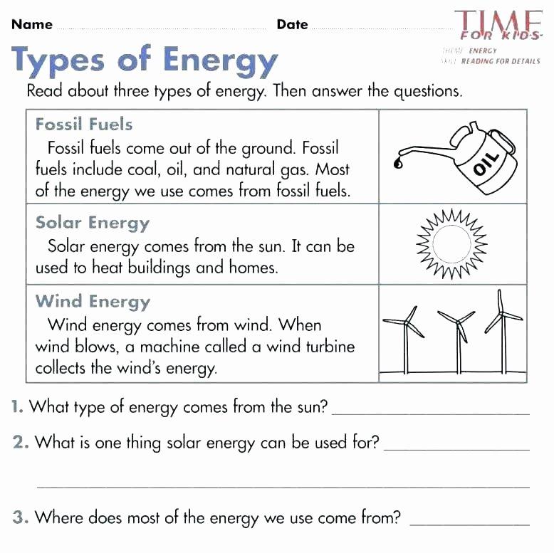 Ecology Worksheets Middle School Energy Prehension Worksheets