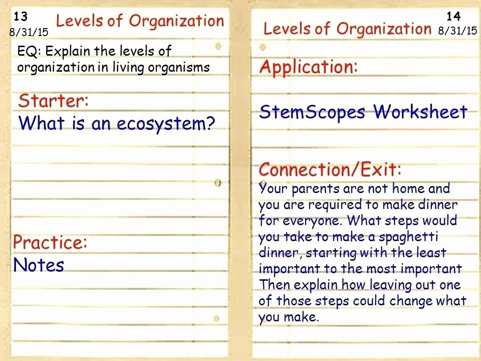 Ecosystem Worksheet Answer Key Inspirational Populations and Ecosystems Worksheets Starter What is An