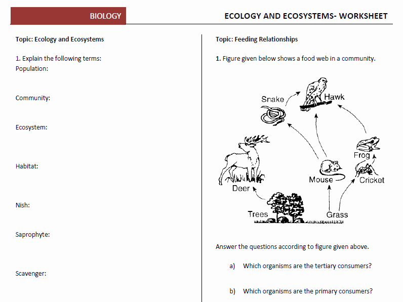 Ecosystem Worksheet Answer Key Lovely Ecology and Populations Worksheets by Biologydomain