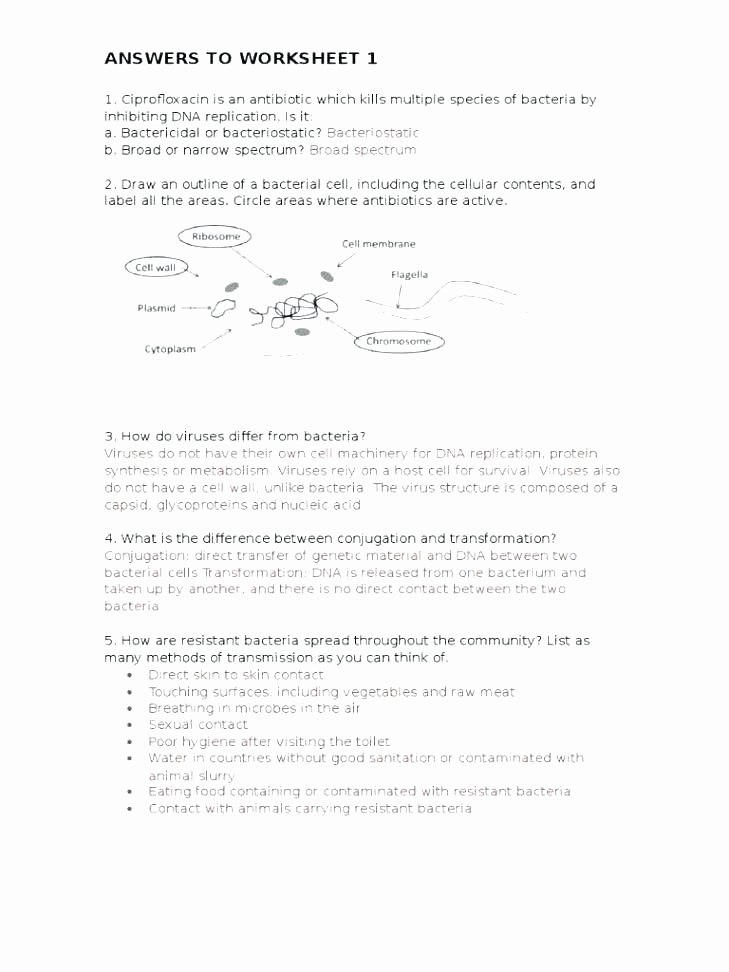 Ecosystem Worksheet Answer Key Lovely Ecosystem Worksheet Freshwater Answers Ecosystems for Kids E