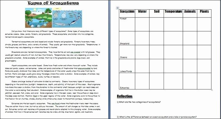 Ecosystem Worksheets 4th Grade Image Result for Ecosystem Worksheets 5th Grade