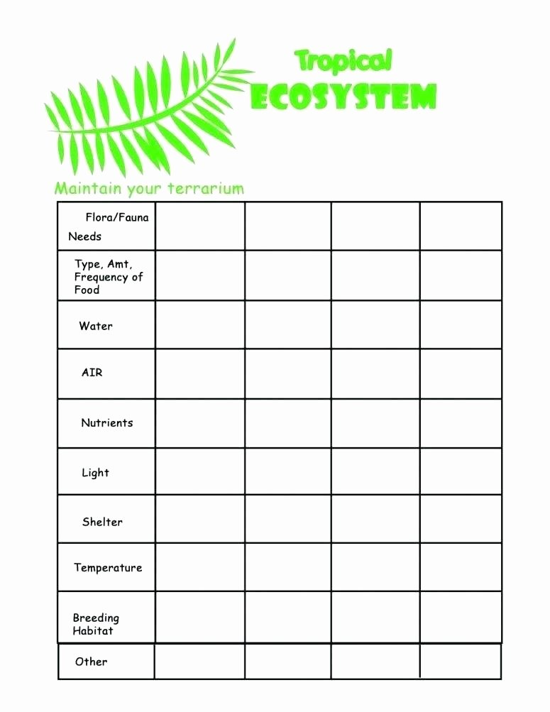 Ecosystem Worksheets 4th Grade Populations and Ecosystems Worksheets Science Ecosystem