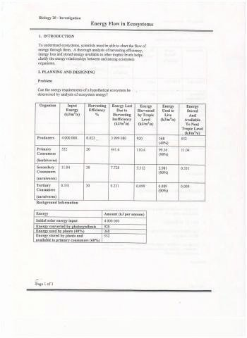 Ecosystem Worksheets 4th Grade Science Ecosystem Worksheets