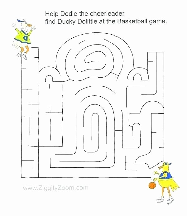 Elementary Cell Worksheets Awesome Free Basketball Worksheets