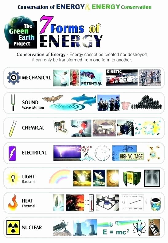 Energy Worksheets for 4th Grade Fossil Worksheets for Grade 4 Light Energy Worksheet 8 forms
