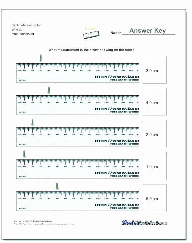 Fifth Grade Measurement Worksheets 4th Grade Math Measurement Worksheets