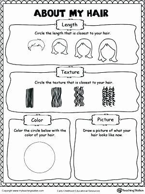 First Grade History Worksheets Kindergarten History Worksheets About My Hair Free Printable