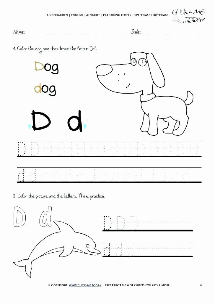 First Grade Writing Worksheets Letter D Worksheets