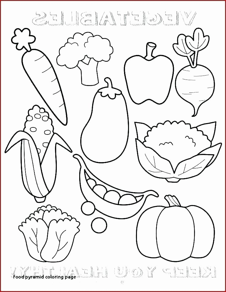 Five Food Groups Worksheets Food Groups Coloring Pages – Usmankhan