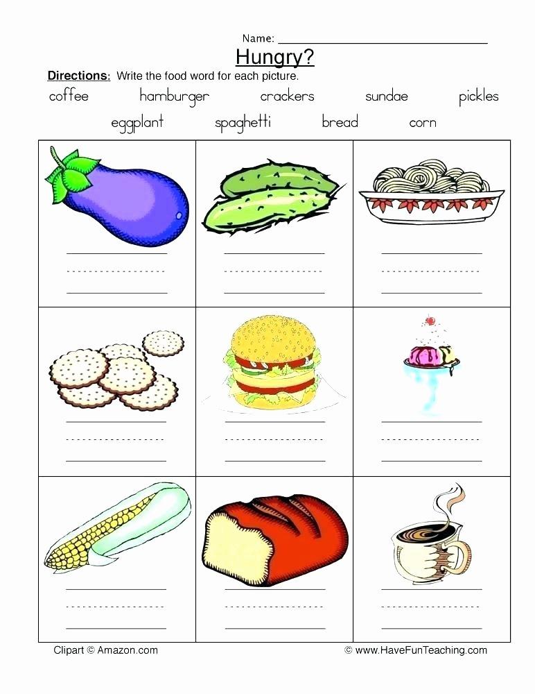 Five Food Groups Worksheets Food Groups Worksheets for Grade 5 Five Food Groups