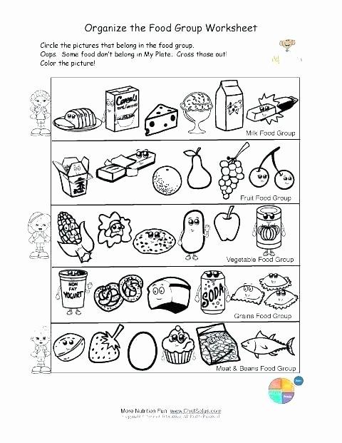 Five Food Groups Worksheets Fruit Worksheets for High School Nutrition Activities Kids