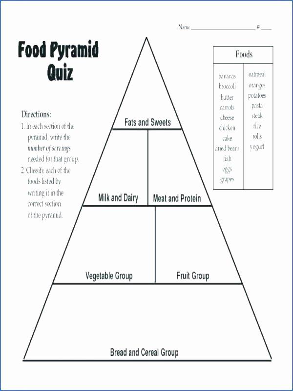 Five Food Groups Worksheets Healthy Food Pyramid Activities Food Pyramid Printable