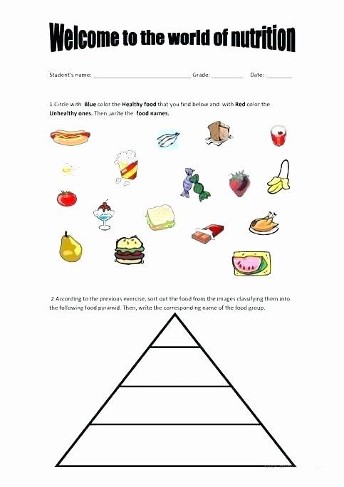 Five Food Groups Worksheets Thanksgiving Worksheet Image Worksheets Printable
