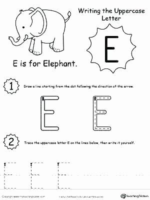 Five Senses Kindergarten Worksheet Kindergarten Science Worksheets Printable