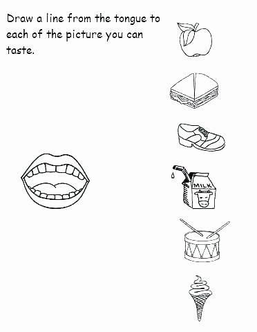 Five Senses Kindergarten Worksheet Sensory Images Worksheets