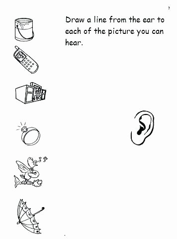 Five Senses Worksheets for Kindergarten Five Senses Worksheets for Kindergarten