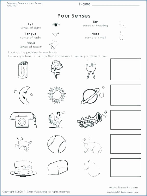 Five Senses Worksheets for Kindergarten Free Kindergarten Science Worksheets Senses Sense Hearing