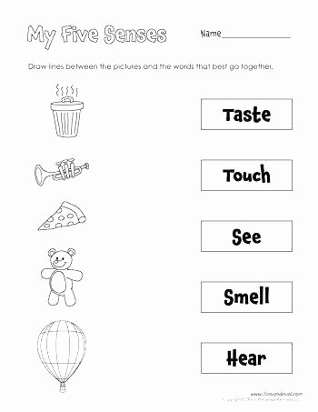 Five Senses Worksheets for Kindergarten Free Number Sense Worksheets
