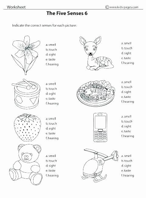 5 senses worksheets five for kindergarten pdf worksheet printable legacy free number sense kinder