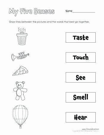 Five Senses Worksheets Pdf Inspirational Sensory Words Worksheet Exercises with Answers