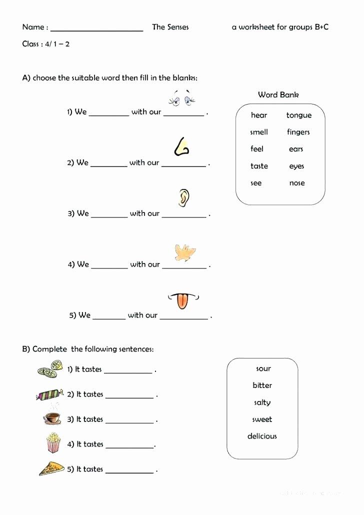 Five Senses Worksheets Pdf Luxury Five Senses Worksheets for Kindergarten Worksheet Printable