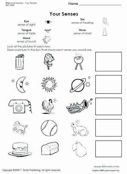 Five Senses Worksheets Pdf New Kindergarten Science Worksheet the Best Worksheets Image
