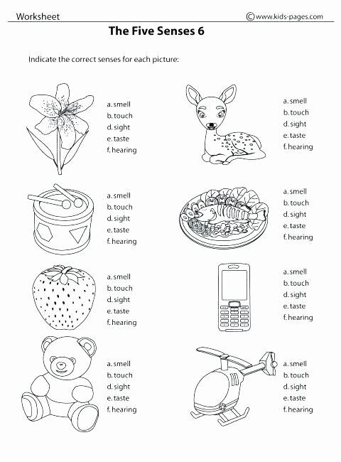 Five Senses Worksheets Preschool Best Of Kindergarten Worksheets the 5 Senses Printable Number Sense