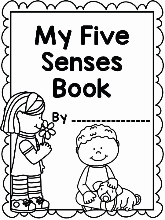 Five Senses Worksheets Preschool Luxury 5 Senses Coloring Pages Free – Littapes