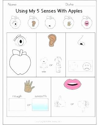 Five Senses Worksheets Preschool Luxury 5 Senses Worksheets Five Senses Worksheets Name 5 Sense