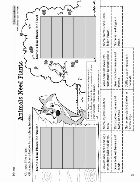 Floss Rule Worksheet Placeholder Main Idea and Supporting Details