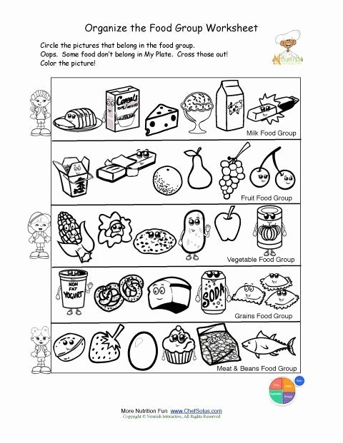 Food Group Worksheets Helen Helendowd8098 On Pinterest