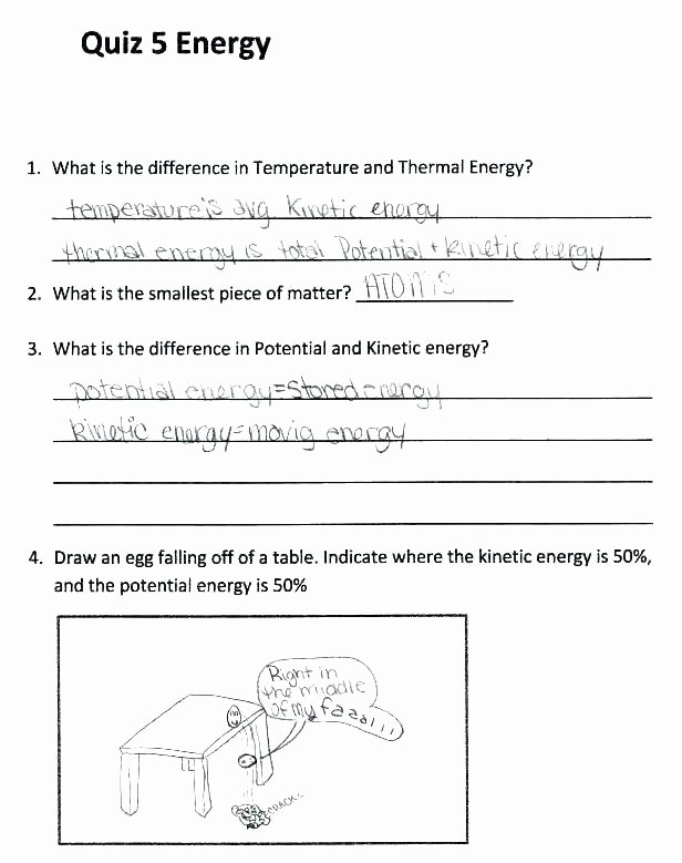 Force and Motion Printable Worksheets Free force and Motion Worksheets