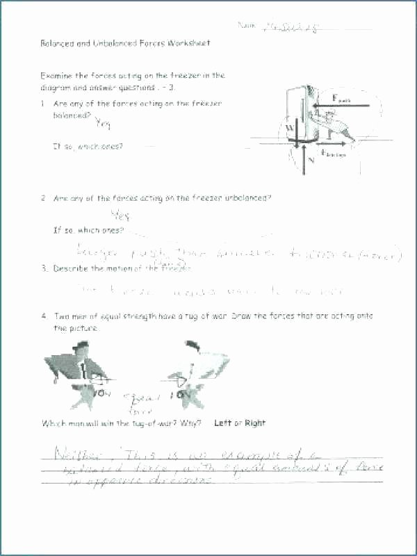 Force and Motion Worksheet Answers Awesome Free Printable force and Motion Worksheets Free Printable