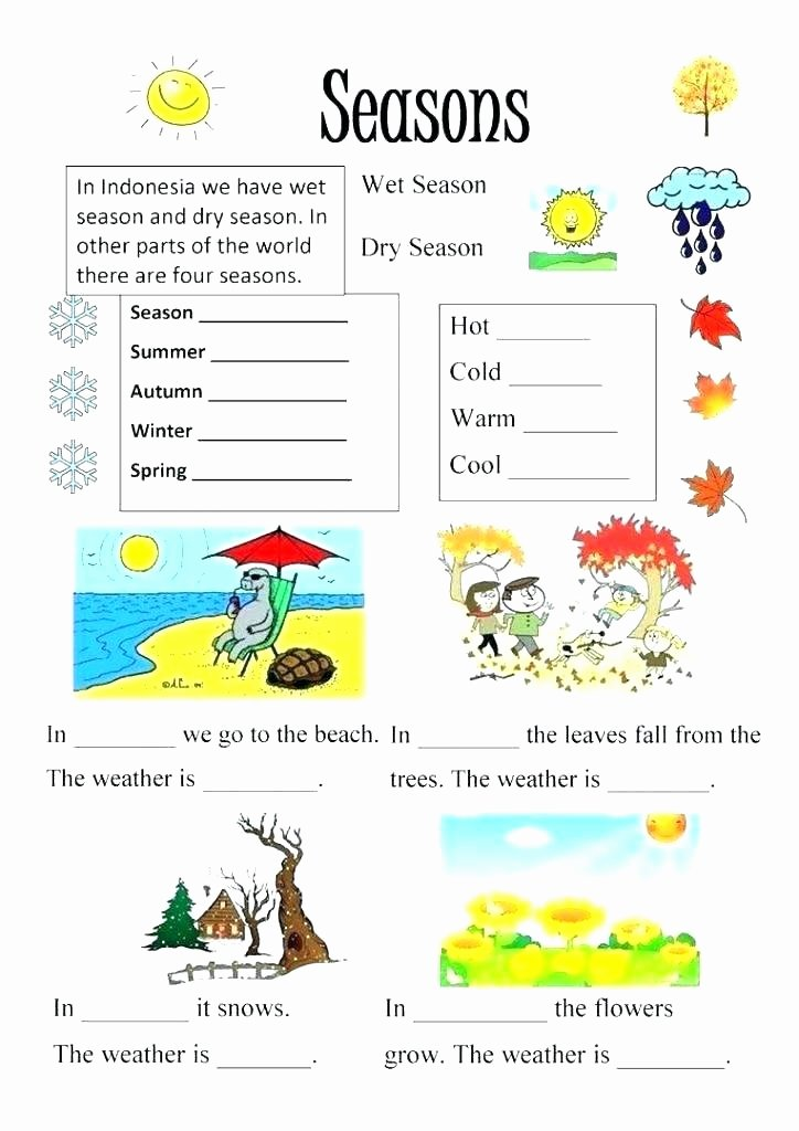 Four Seasons Kindergarten Worksheets Four Seasons Activity Other Unit Ideas Free Printable