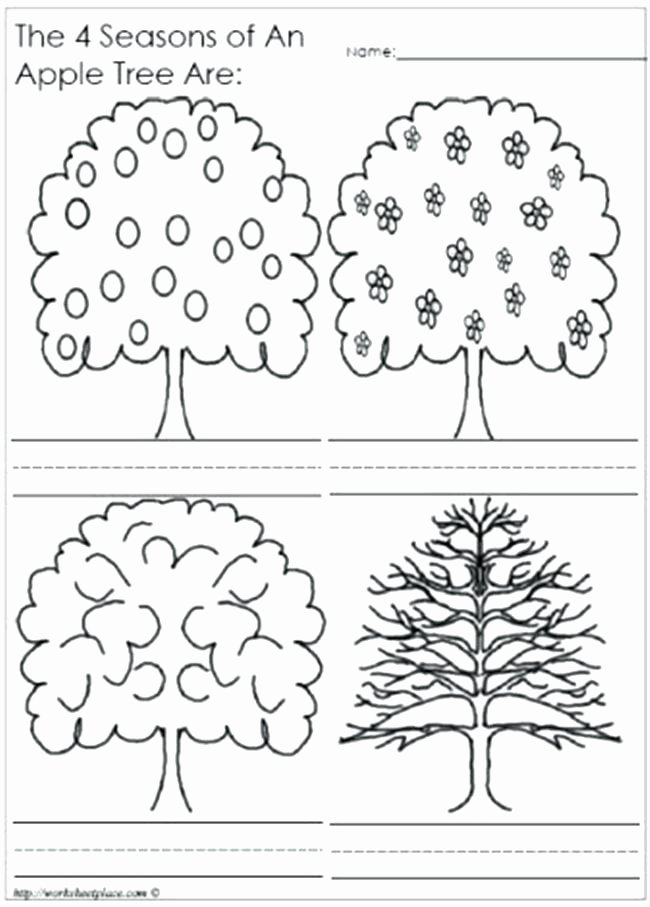Four Seasons Kindergarten Worksheets Free Printable Seasons Worksheets for Kindergarten Free
