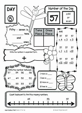 Fractions Worksheets First Grade Understanding Fractions Worksheets Picture Addition for