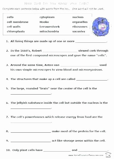 Free 8th Grade Science Worksheets Vocabulary Snip It Worksheet to Review Alternative Energy