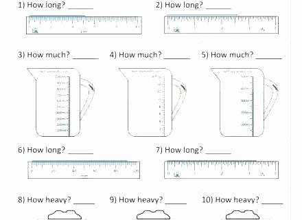 Free Capacity Worksheets 5th Grade Measurement Worksheets Printable Measurement