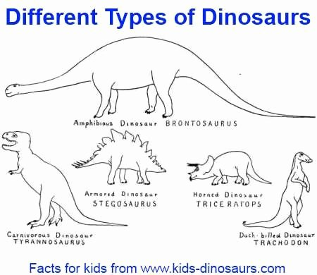 Free Dinosaur Worksheets Different Types Of Dinosaurs Dinosaur Names Can Be Divided