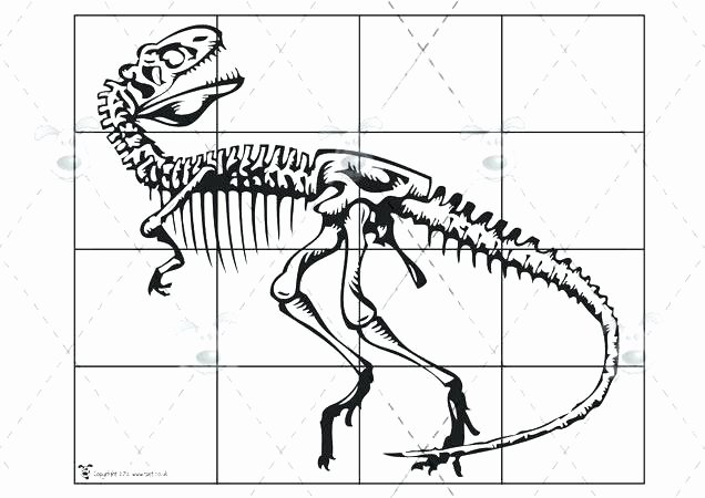 Free Dinosaur Worksheets Fossils Worksheet Free Printable Earth Science Hidden Fossil