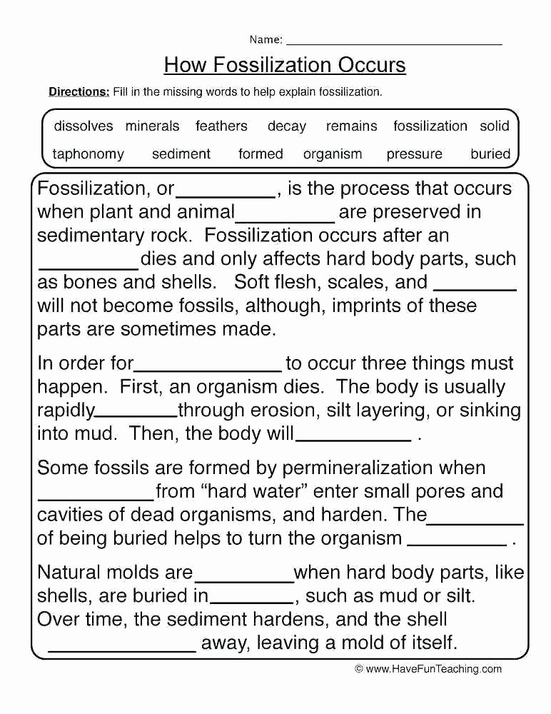 Free Earth Science Worksheets Grade Earth Science Worksheets Best and Space