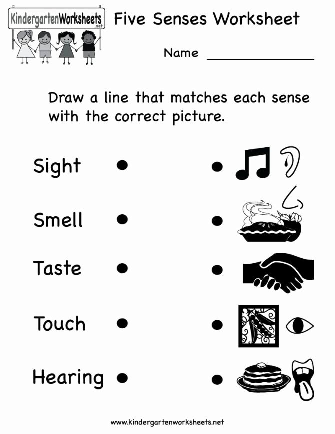 Free Five Senses Worksheets Free Science Worksheets for Kindergarten Students