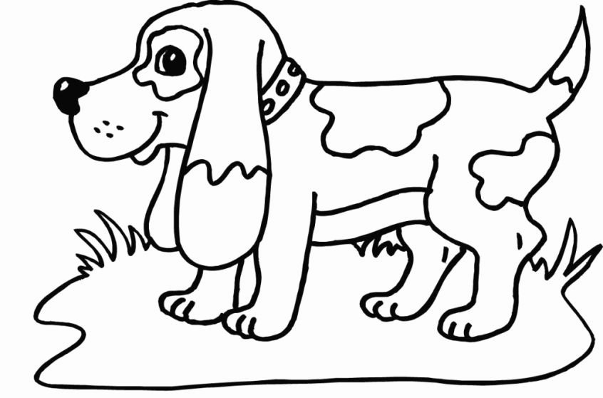Free Grid Coloring Worksheets New Grid Drawing Coloring Page Nocn
