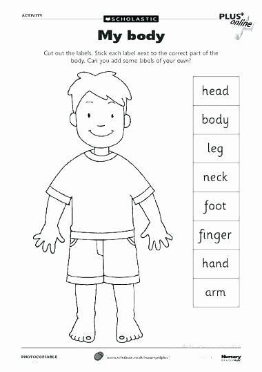 Free Human Body Systems Worksheets Human Body Systems Worksheets Den for Grade Reading 5 Science