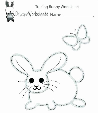 Free Insect Worksheets Worksheets for Pre Schoolers