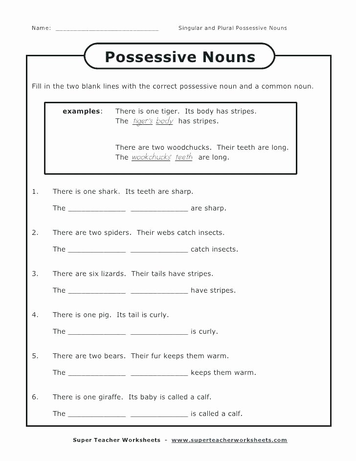Free Irregular Plural Nouns Worksheet Plural Possessive Nouns Worksheets 4th Grade