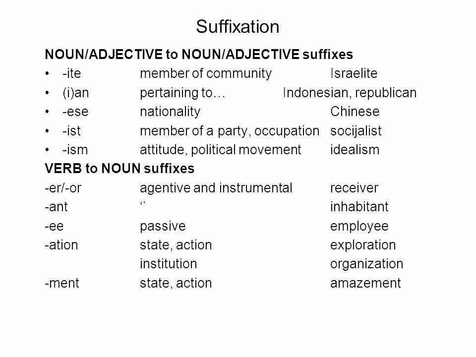 Free Prefix and Suffix Worksheet Suffix Worksheet Suffixes Free Worksheets Grade Words 3